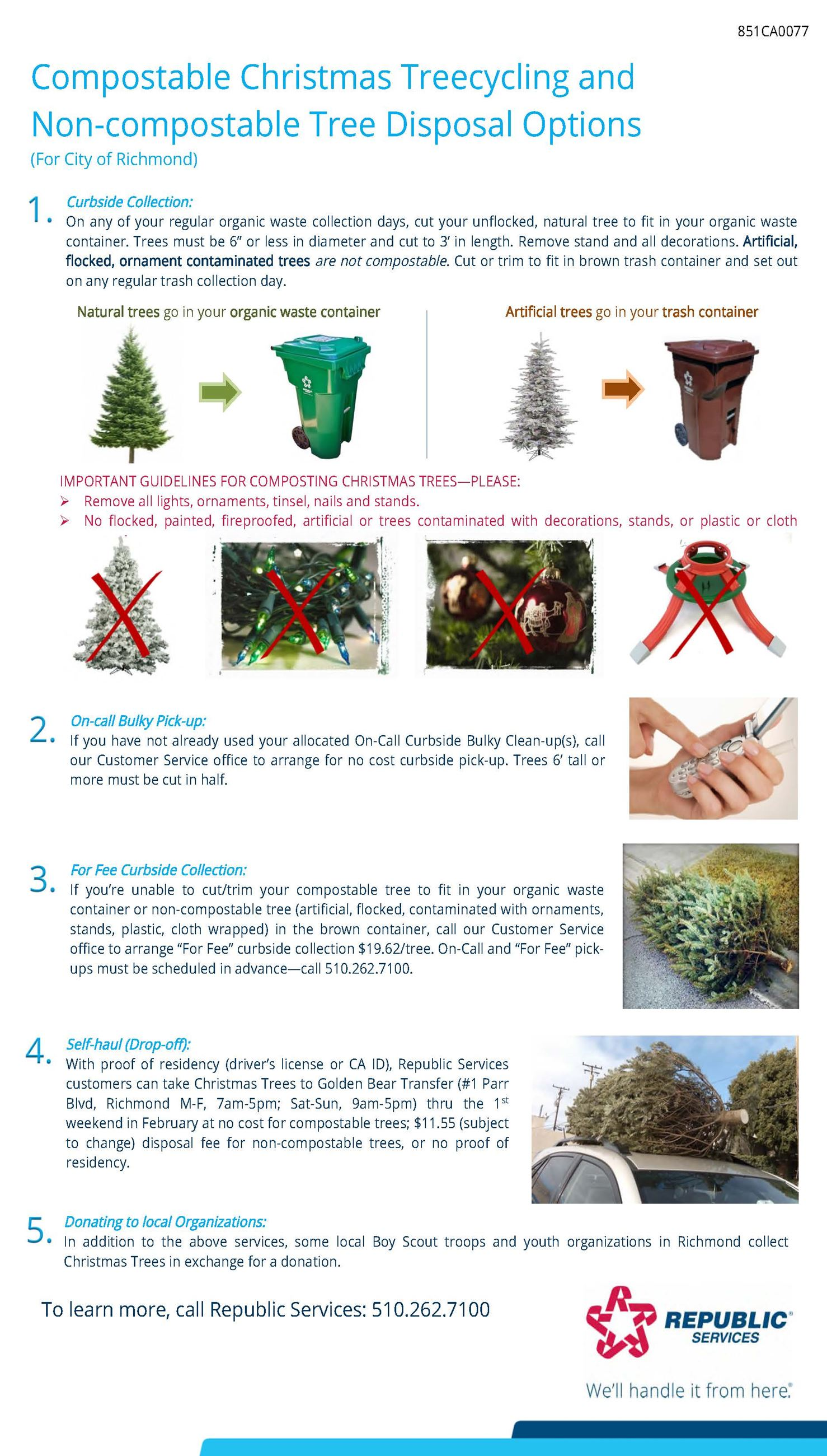 Richmond 2019 Christmas Tree flyer_English