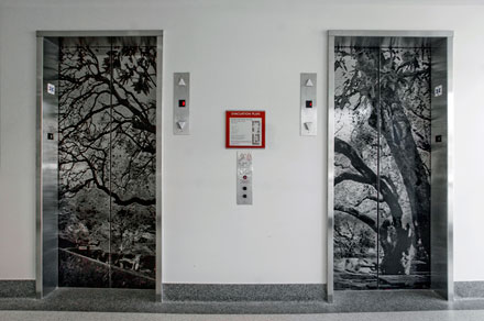 Photo of the Art on the Elevator Doors of 440 Civic Center Plaza on the 1st Floor